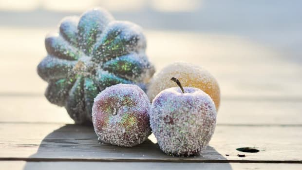 sugar coated fruit