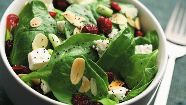 Cranberry Spinach Salad with Poppy Seed Dressing