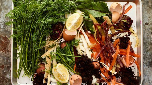 Food Scraps horizontal