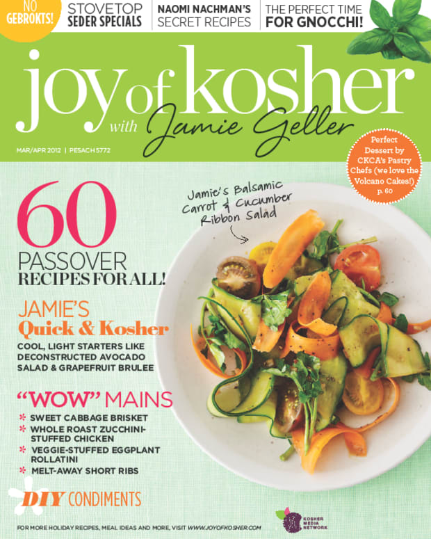 JOK Passover Cover
