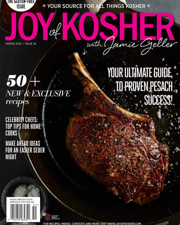 pesach cover s