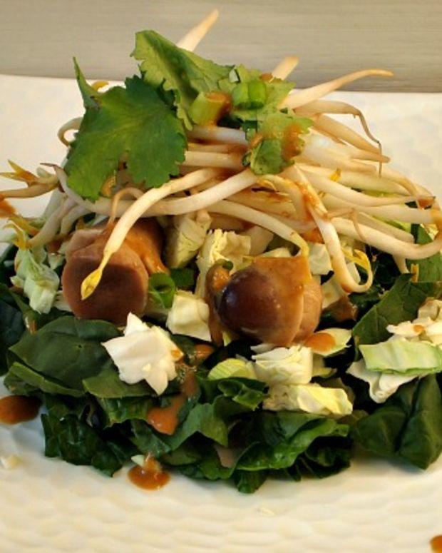 Asian-Salad-with-Wasabi-Sauce-joyofkosher