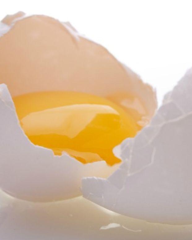 egg safety