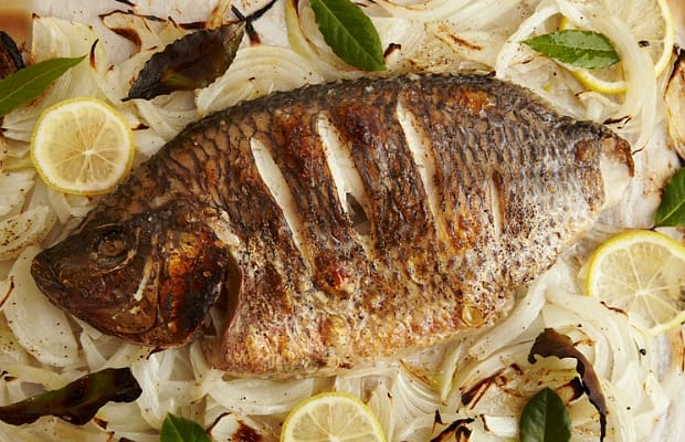 4 Fish Recipes And How To Pick Fresh Fish