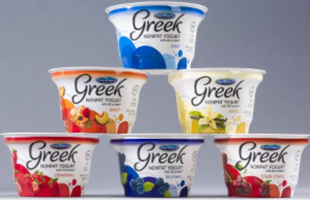 Normans-Jewish-Greek-yogurt-300
