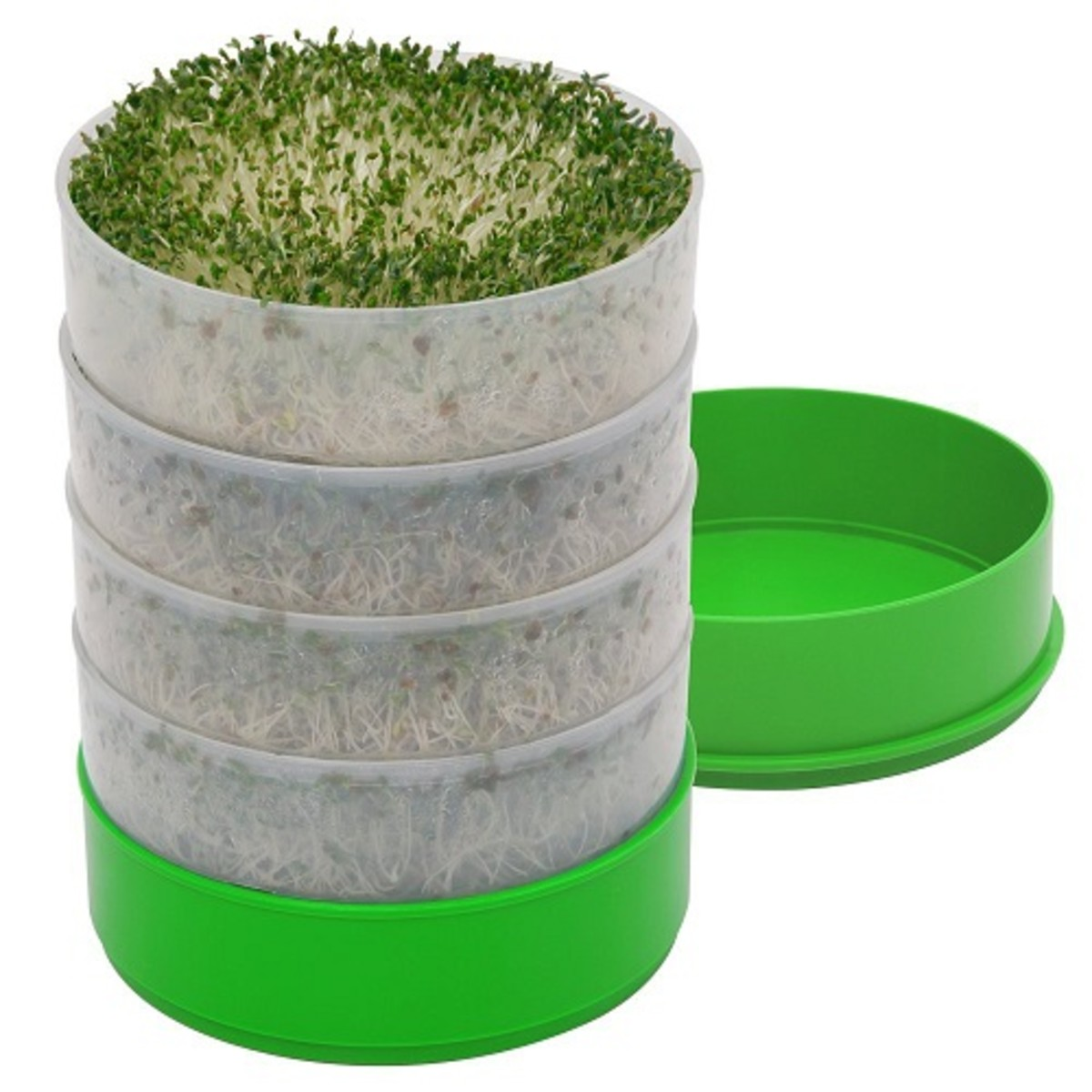 Stacked sprouting trays  small