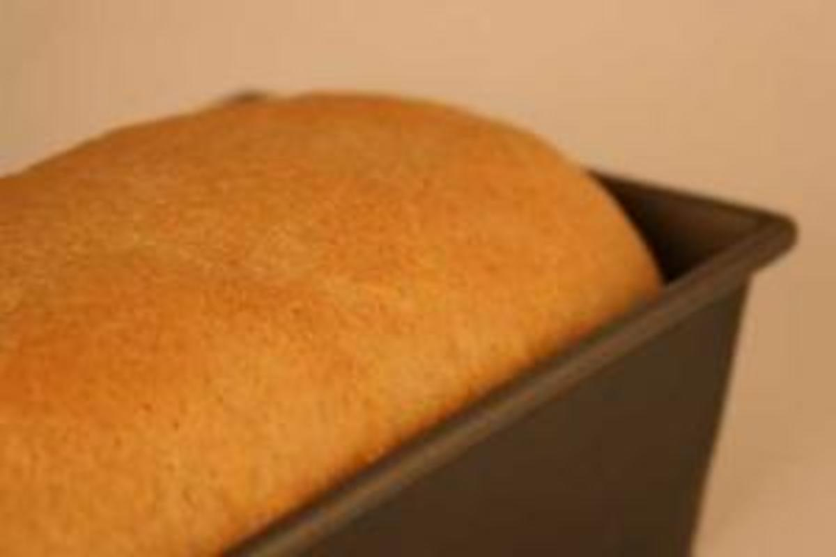 Oat-y-licious Wheat Bread