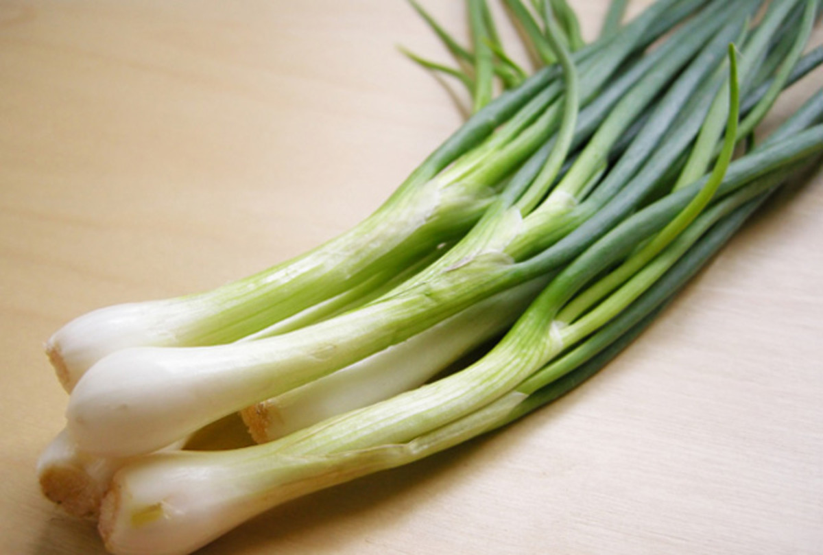 Image result for Spring Onions