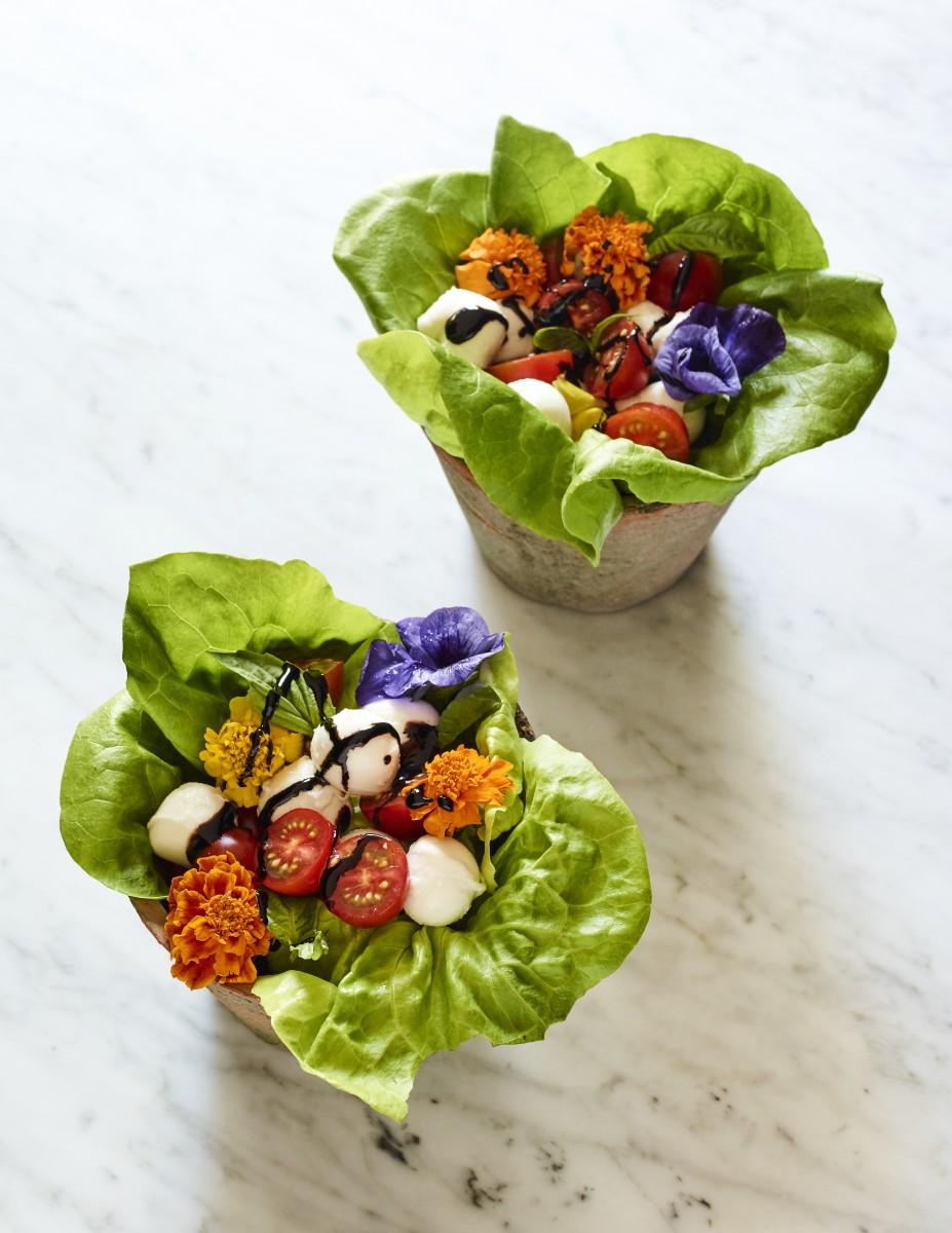 edible garden bowls
